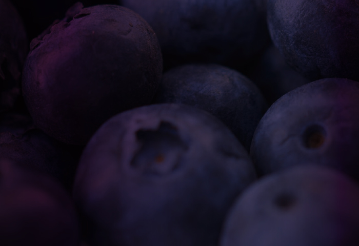 Cryptic_berries_pg